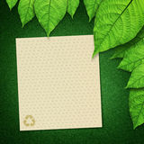 Empty paper recycle and green leaves Royalty Free Stock Image