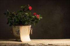 Empty Paper with Roses on wooden Table Royalty Free Stock Images