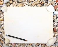 Empty paper on sea shell Royalty Free Stock Photography