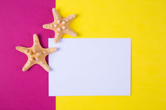 Empty paper sheet with two starfishes on colored backgrounds wit Stock Photo