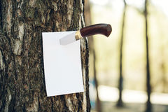 Empty paper stuck into a tree with a knife Royalty Free Stock Photos