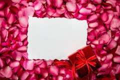Empty paper with  sweet pink roses  petal and red gift box , rom Royalty Free Stock Photography