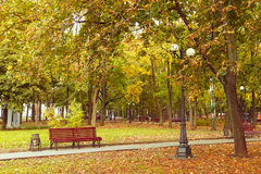 Empty park in Autumn Stock Image