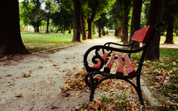 Empty park bench in fall Stock Images