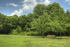 Empty Park Bench In Green Grassy Field Royalty Free Stock Photo