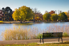 Empty Park Bench by a Lake in Fall - Denver Stock Photos