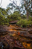 Empty Park Bench. An empty park bench in a by a walking trail in a forest in the Australian bush stock photo