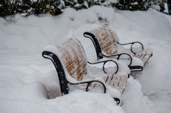 Empty park benches. The park benches remain empty when it`s a tad cold to sit out in the park Royalty Free Stock Photography