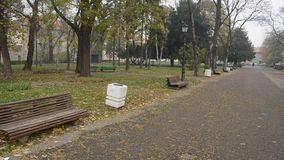 Empty park. Empty city park during the late autumn morning stock video