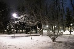 Empty park at night on a snowy winter day Stock Image