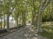Empty Park at Montevideo Stock Image