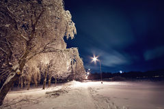 Empty park in the night. Empty city park in the night stock image