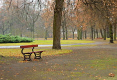 Empty park in a raining day Stock Photo