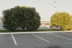 Empty parking lot area Royalty Free Stock Image