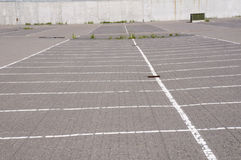 Empty parking lot. In a summer day Royalty Free Stock Photo