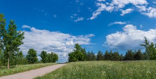 Empty Path Across Summer Meadow. Panoramic view of empty path leading across meadow hill to tree line on sunny summer day Stock Photos
