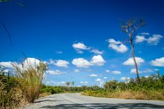 Empty paved road through Cambodia Royalty Free Stock Photography