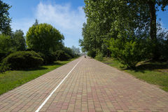 Empty paved walking path Royalty Free Stock Photos