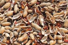 Empty peanuts shells pile Stock Photos