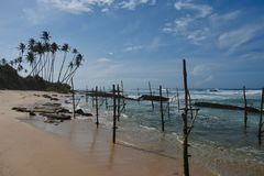 Empty perches for the stick fishermen of Galle stock images