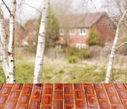Empty perspective red wall over blurred trees,home with bokeh background, for product display montage Stock Photo
