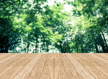 Empty perspective room with blurred green tree forest and wooden Royalty Free Stock Image