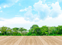 Empty perspective room with lagoon at forest and blue sky and wo Stock Photo