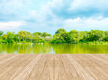 Empty perspective room with lagoon at forest and blue sky and wo Royalty Free Stock Photography