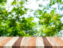 Empty perspective table with blurred green tree forest,Template stock photography