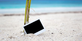 Empty photo card on beach Royalty Free Stock Photography