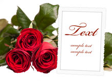 Empty photo frame with roses Royalty Free Stock Photography