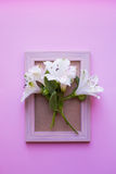 Empty photo frame with bouquet of white Alstroemeria on pink bac Stock Image