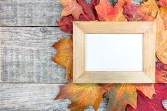 Empty photo frame and colorful autumn dry leaves on gray wooden Stock Photos