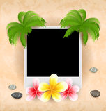 Empty photo frame with palm, flowers frangipani, sea pebbles Royalty Free Stock Images