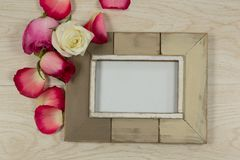 Empty photo frame with rose flower and petals. Close-up of empty photo frame with rose flower and petals royalty free stock image