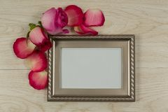 Empty photo frame with rose flower and petals. Close-up of empty photo frame with rose flower and petals stock images