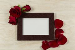 Empty photo frame with rose flower and petals. Close-up of empty photo frame with rose flower and petals stock image