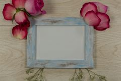 Empty photo frame with rose flower and petals. Close-up of empty photo frame with rose flower and petals stock photo