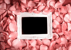 Empty photo frame with  sweet pink roses  petal  , romance and l Royalty Free Stock Photography