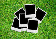 Empty photos on green grass Stock Images