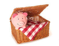 Empty picnic basket and piggy bank Royalty Free Stock Photos