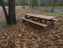 Empty picnic table with autumn leaves Royalty Free Stock Images