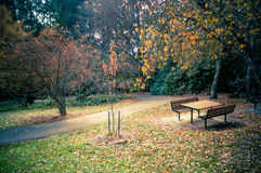 Empty picnic table in a beautiful Autumn garden settings with ye Stock Photography
