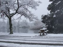 Empty picnic table covered in snow Stock Photography