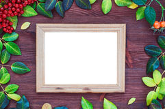 Empty picture frame around the yellow and green leaves Royalty Free Stock Images