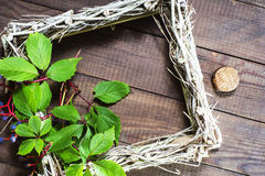 Empty picture frame decorated wild grapes. Royalty Free Stock Images