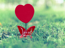 Empty of picture frame heart shapes on green grass Royalty Free Stock Photos