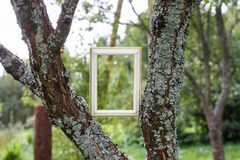 Empty picture or frame. Empty picture or photo frame royalty free stock photos
