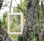 Empty picture or frame. Empty picture or photo frame royalty free stock photography