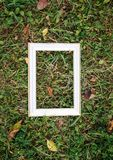 Empty picture or photo frame. Empty picture or photo frame on green grass stock photo